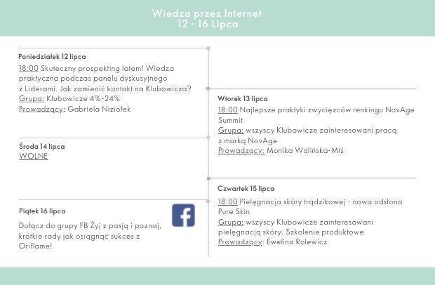 Wiedza przez internet